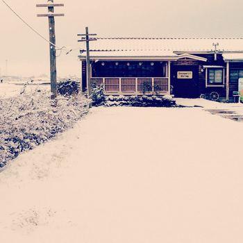 ココペリ冬.jpg